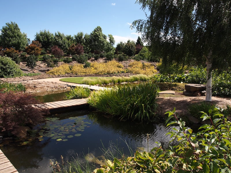 Mayfield Water Garden lower section
