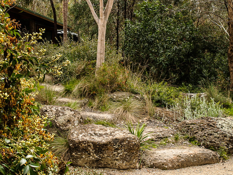 Making australian gardens with a sense of place gardendrum for Landscape architecture courses adelaide