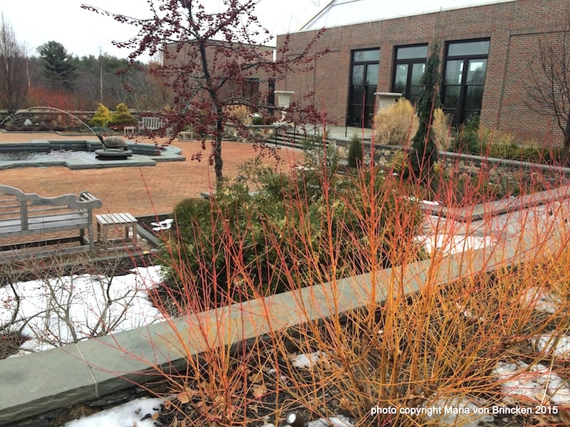"""The courtyard at Tower Hill's """"Winter Garden"""""""
