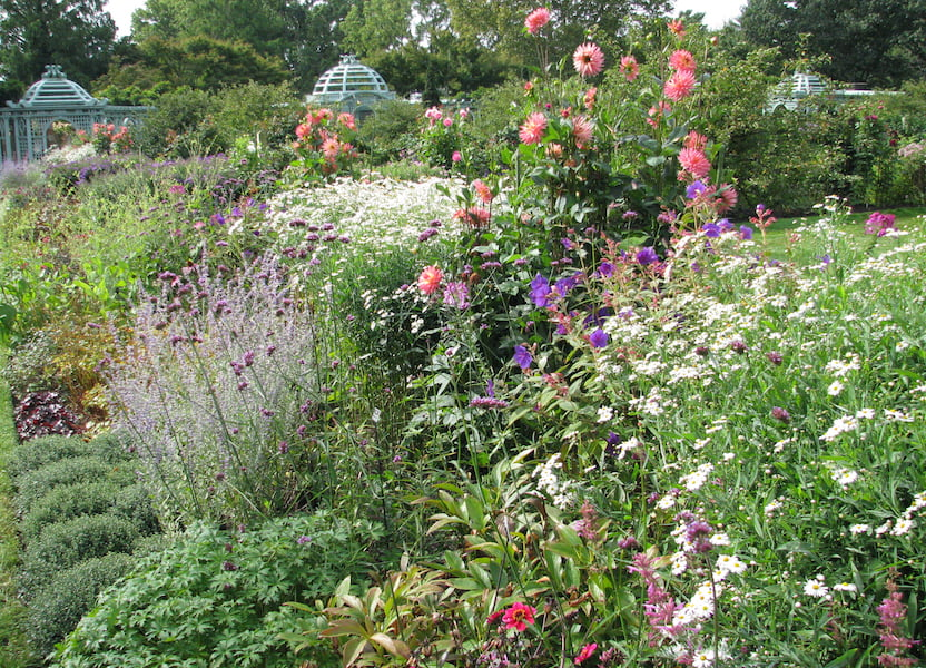 Walled Garden in September Photo Vince Kish