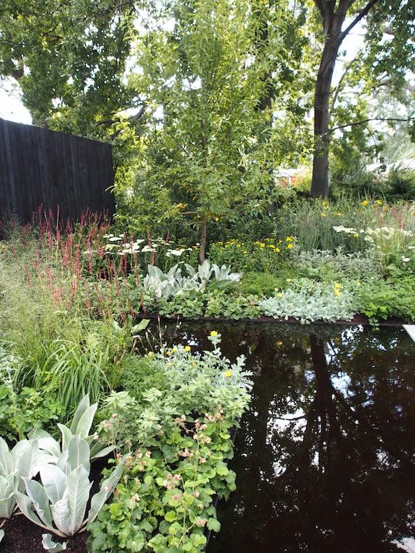 Reflection by Ian Barker Gardens MIFGS 2016