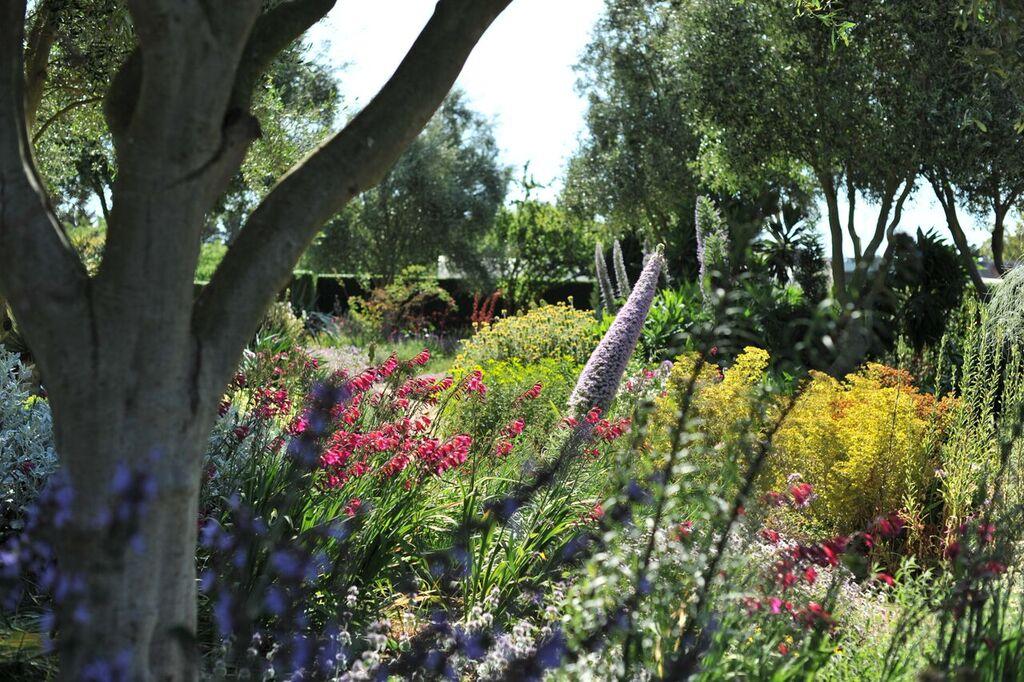 Lambley Nursery gardens