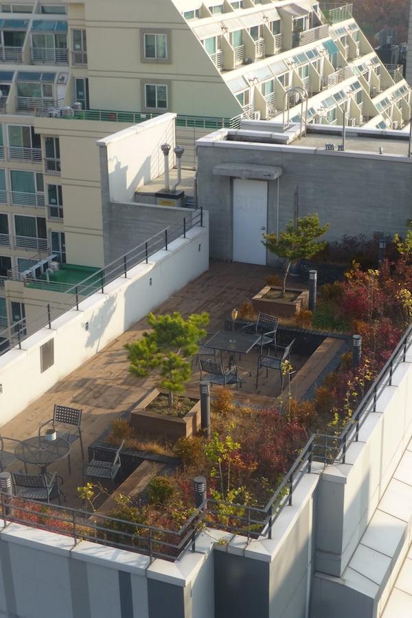 Seoul roof garden