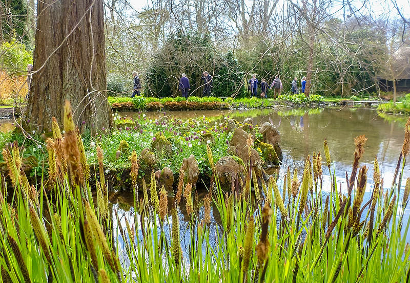 Garden Review Longstock Park Water Garden Hampshire Gardendrum