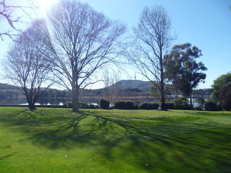 Shadows at Yarralumla