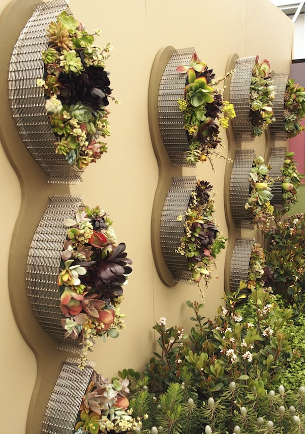 Stainless steel mesh wall garden. Planters by Roger Apte, planting by Glenice Buck
