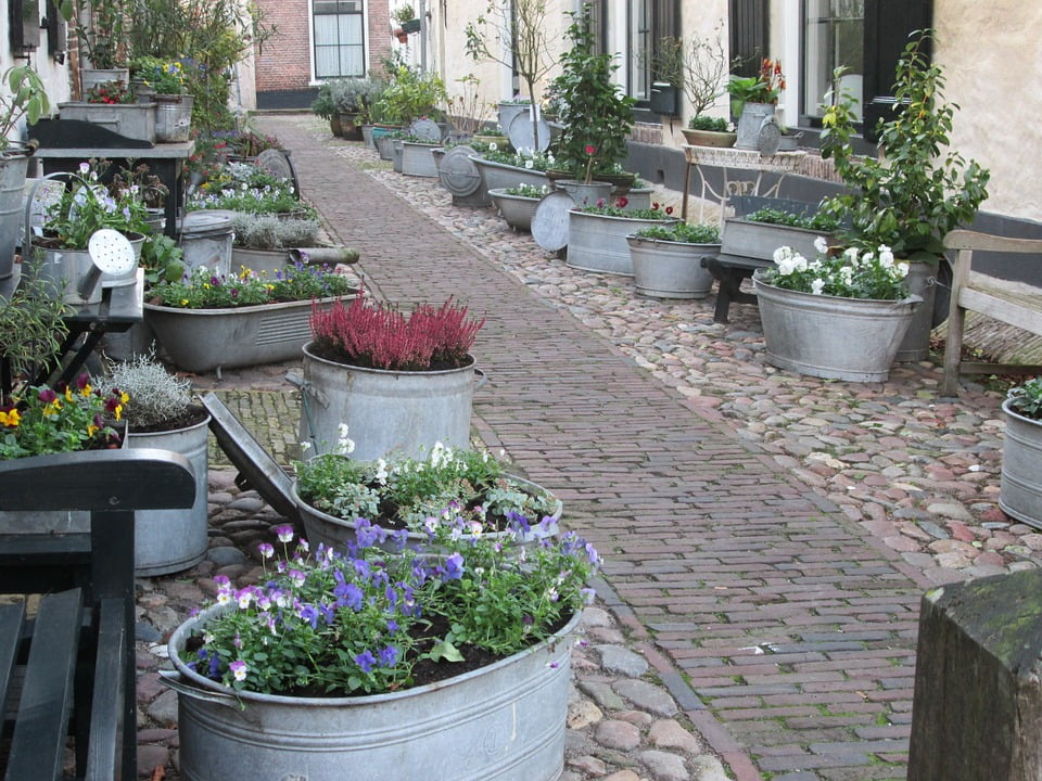 Zinc planters. Photo MagreetKeijzer