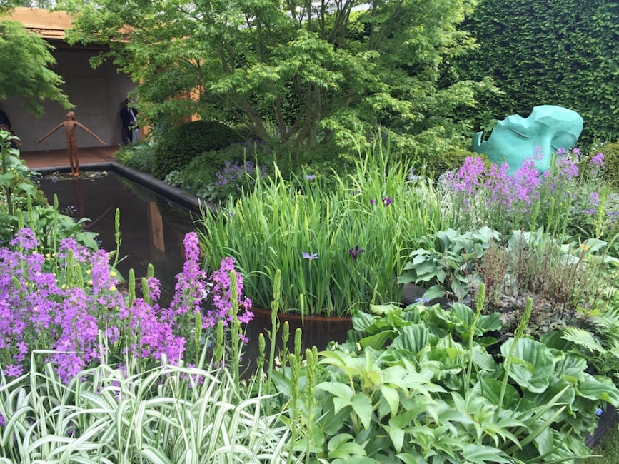 The Morgan Stanley Garden for Great Ormond Street Hospital designed by Chris Beardshaw awarded a gold medal. Chelsea Flower Show 2016