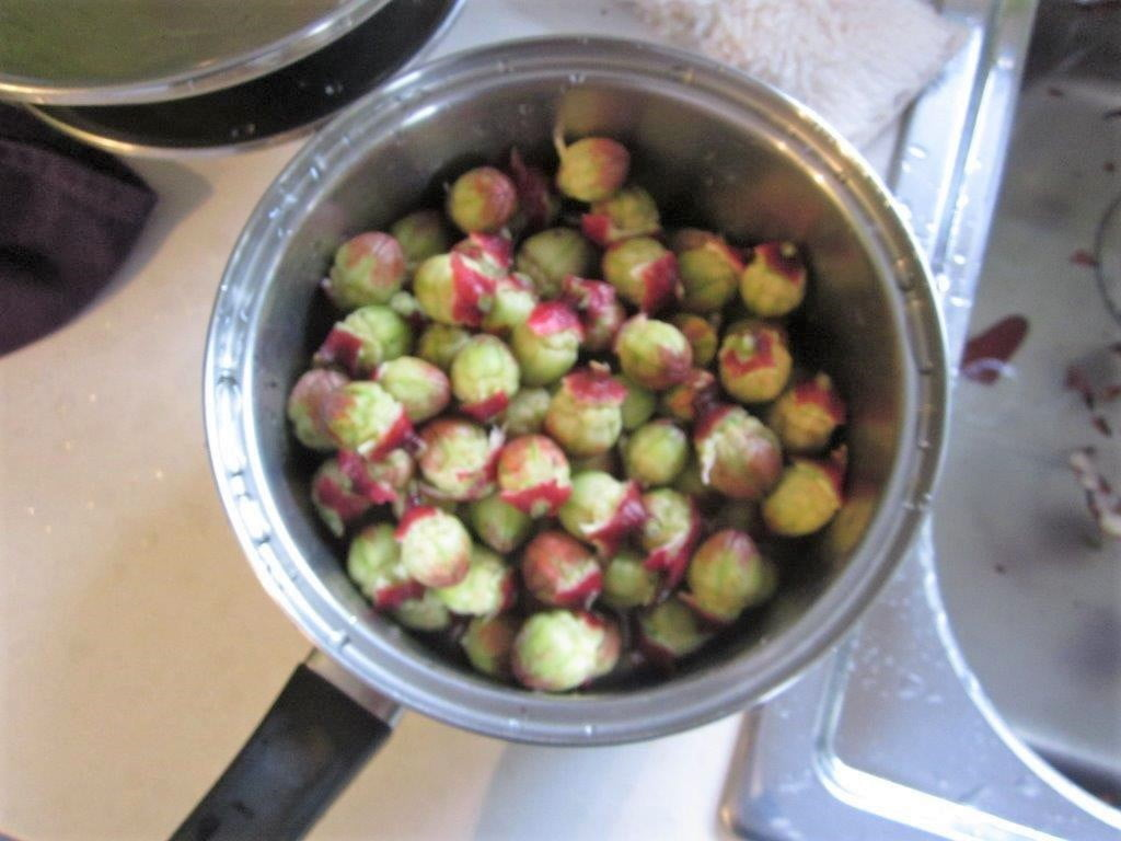 Pectin rich seedpods ready for cooking