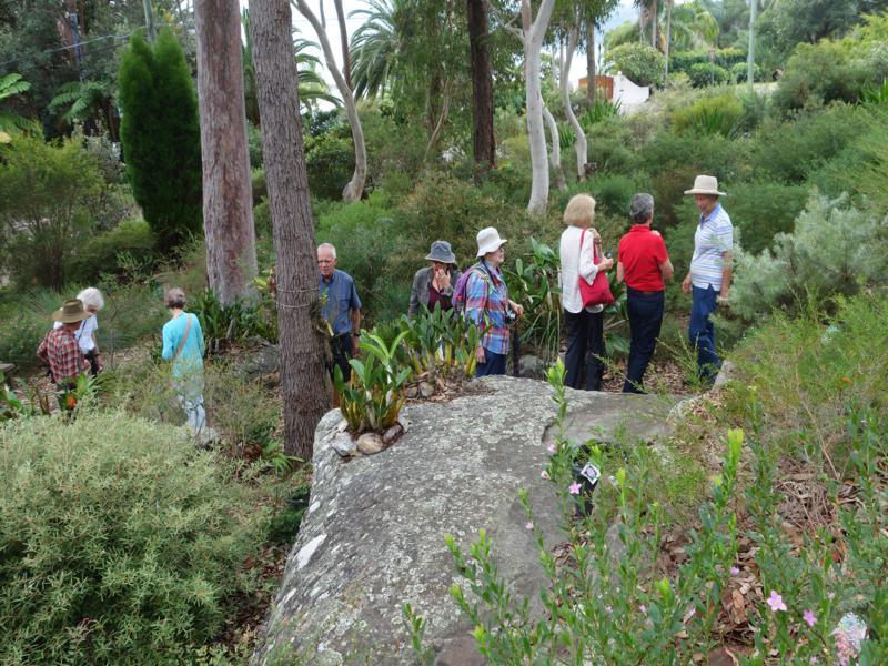 APS members enjoying the tour of Ted & Nancy's Garden
