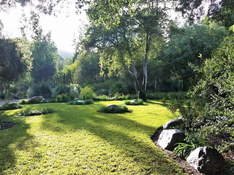 Australian Garden at Taft-Ojai Gardens