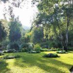 Australian Garden at Taft-Ojai Gardens California (4)_800x600_600x600