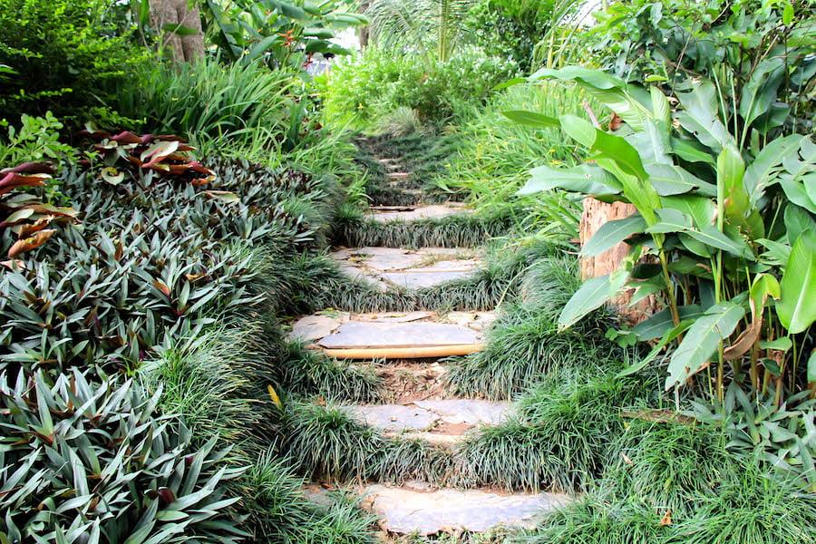 Pha Tad Ke Botanical Garden, Laos - steps