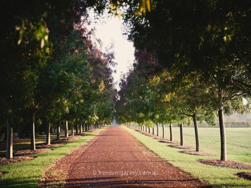 Fraser Gallop Garden. Photo by Freedom Garvey.
