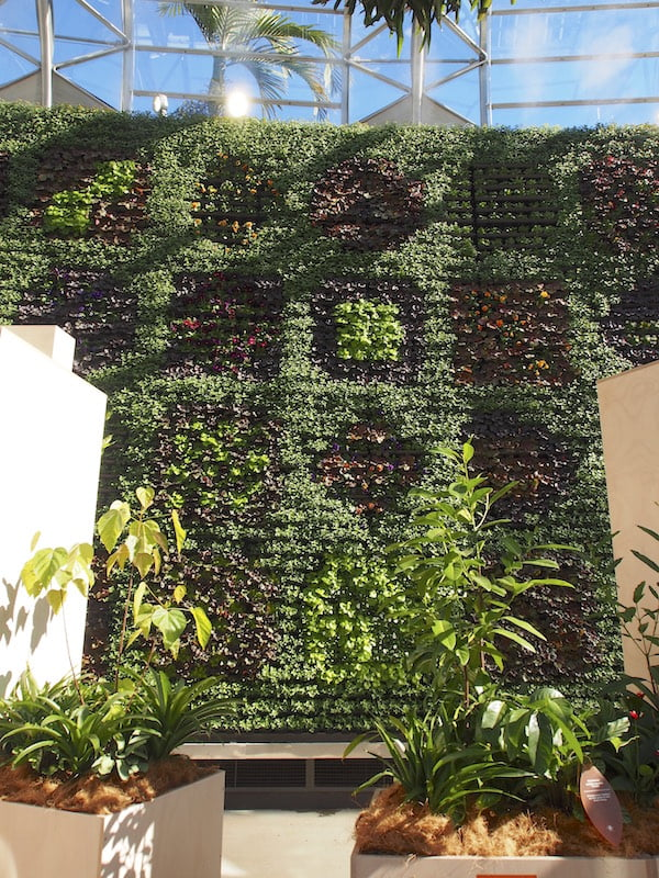Vertical garden wall pictures inside The Calyx
