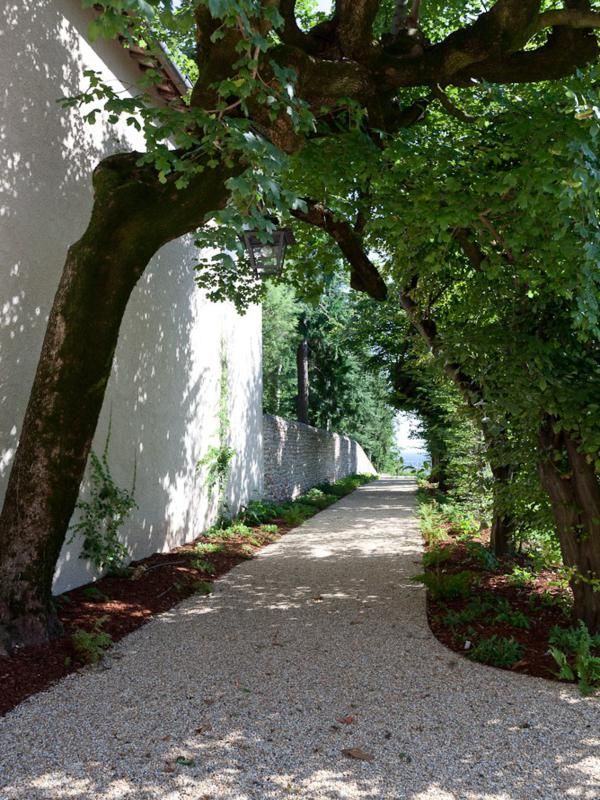 Hornbeams line a path at Villa Freya