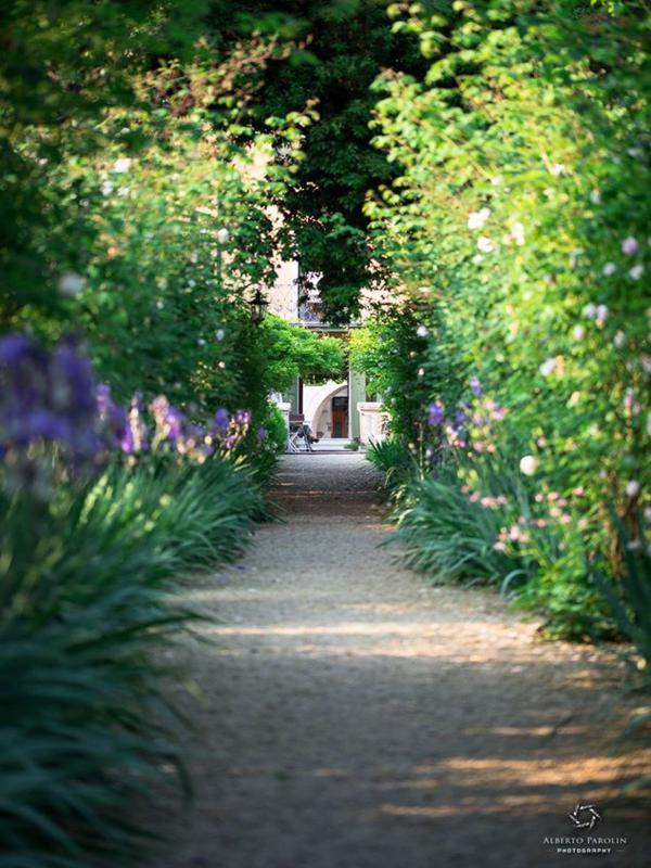 Villa Freya plant lined pathway. Photo Alberto Parolin Photography.