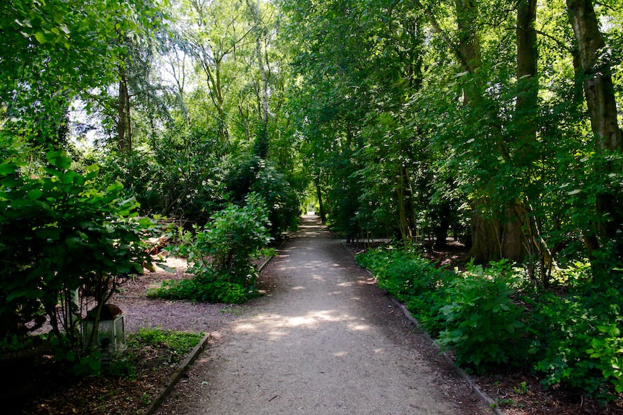 Amsterdam's secret gardens - woodland gardens shaded by avenues of trees