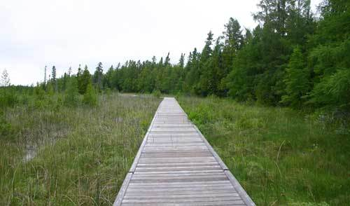 The boardwalk through the fen at the Brokenhead Wetlands Interpretive Trail.