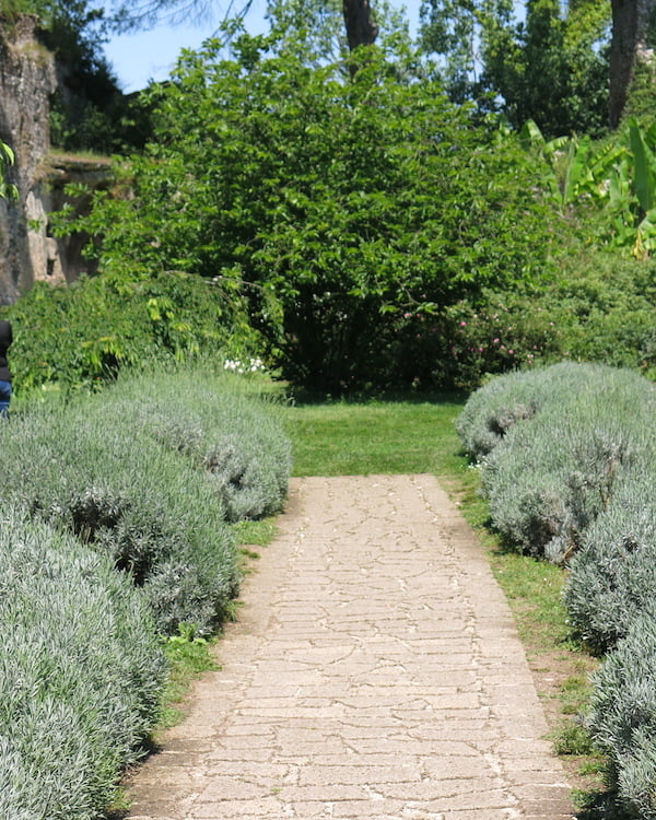 Lavender walk at Ninfa. Photo Deryn Thorpe
