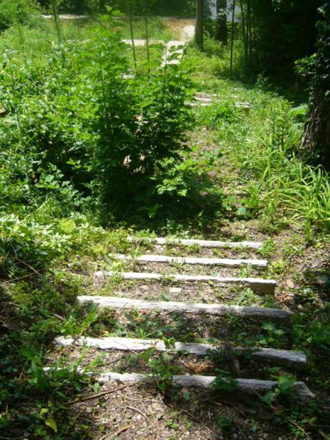 Pathway and steps before restoration