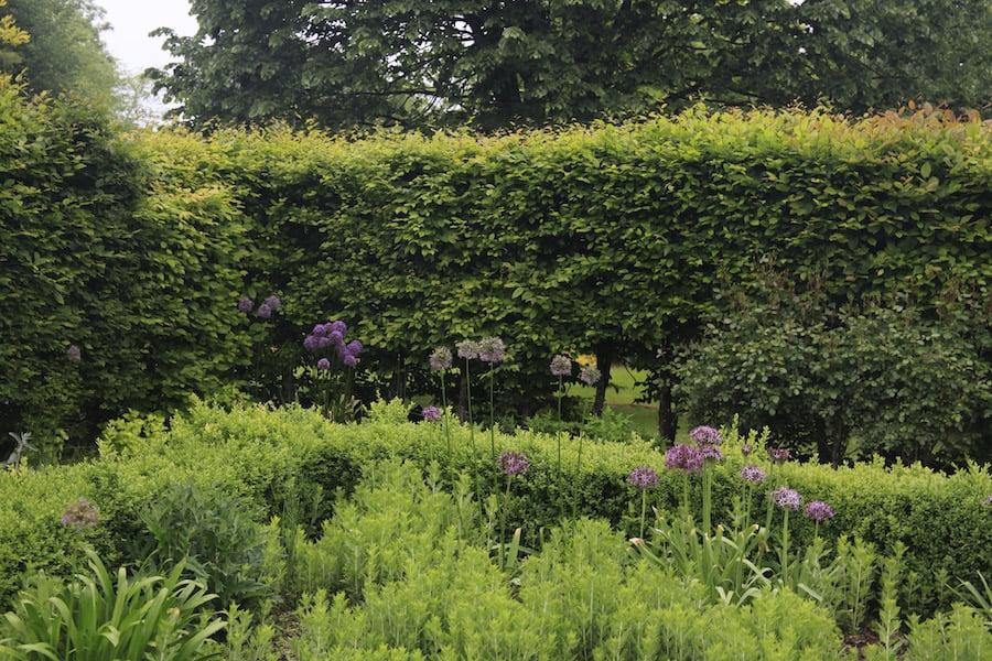 Shaggy hedges display a lack of care in Les Jardins en Le Pays d'Auge