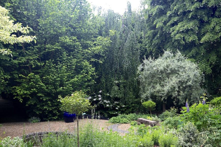 6. Informal shrubbery in Les Jardins en Le Pays d'Auge