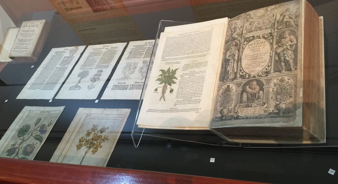 Early herbals on display including 'Herball or generale historie of plantes' by John Gerard 1597