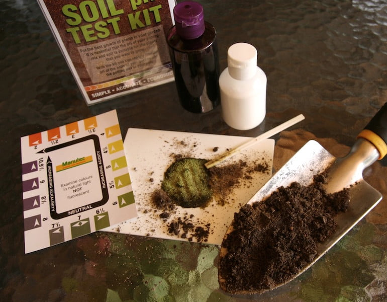 Testing and measuring soil pH