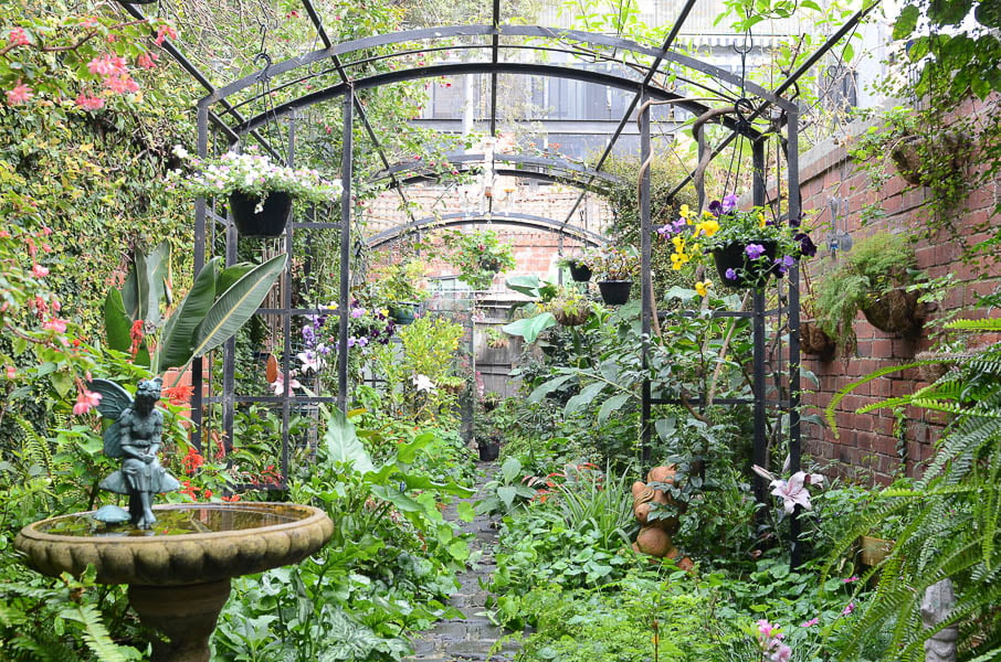 Anne Atkins' garden, open for Open Gardens Victoria. Photo Annabel Reid