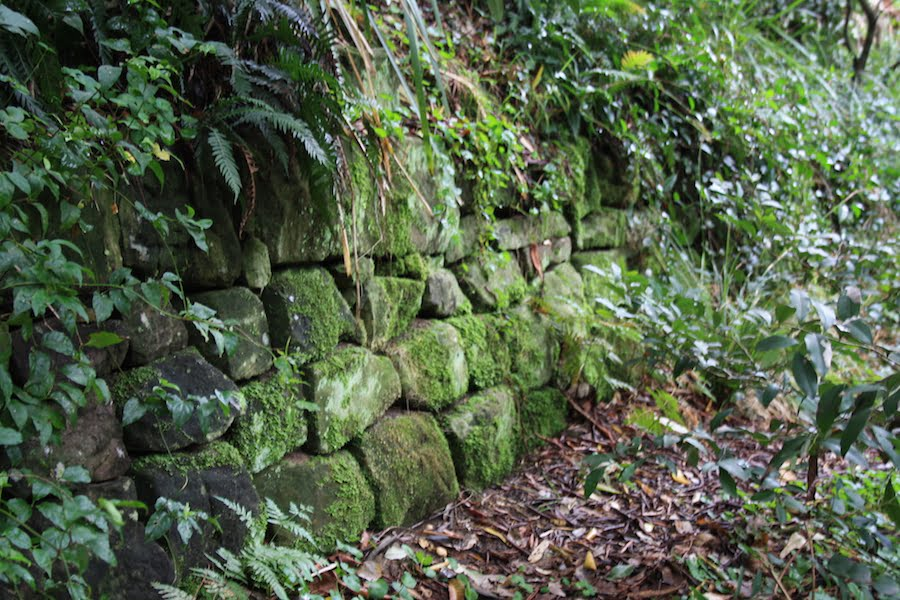 Dry stone wall in the gully