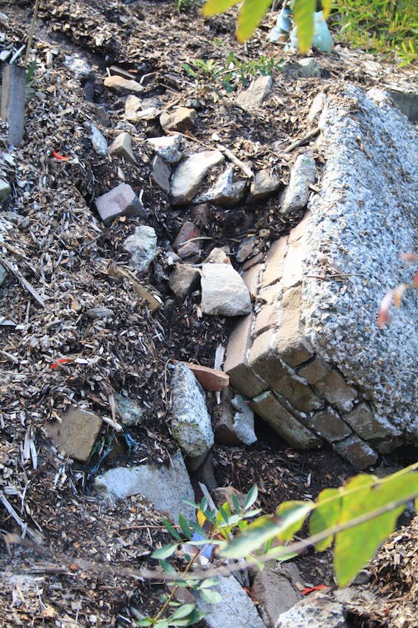 Gully gouged out of hill by surface runoff. This ground was previously covered by 30cm of mulch. Note the building rubble exposed by washout