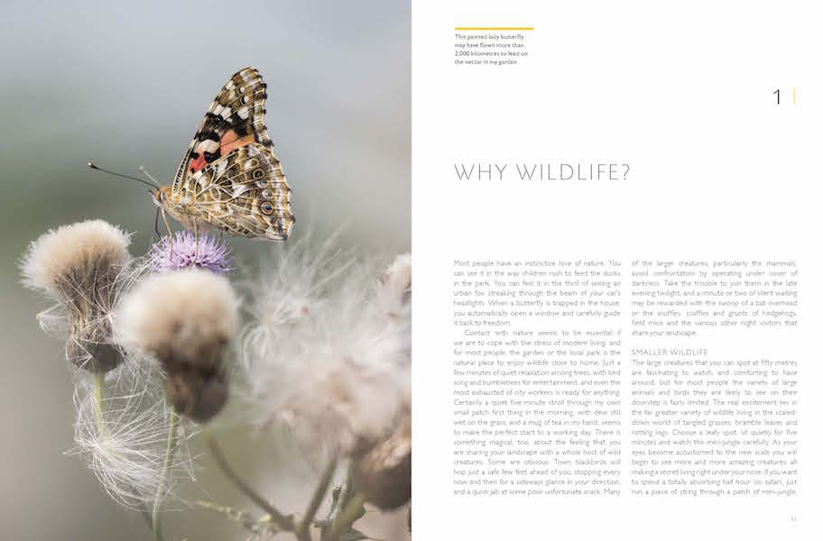 RHS Companion to Wildlife Gardening p10-11