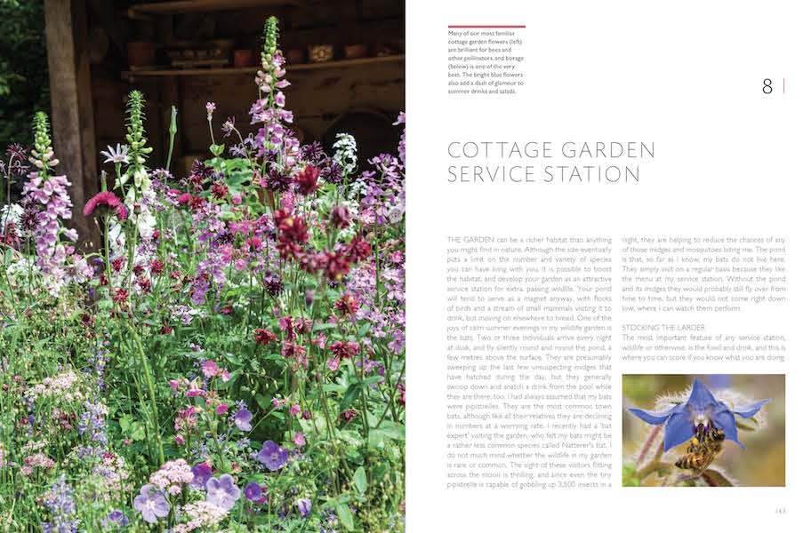 RHS Companion to Wildlife Gardening p142-43