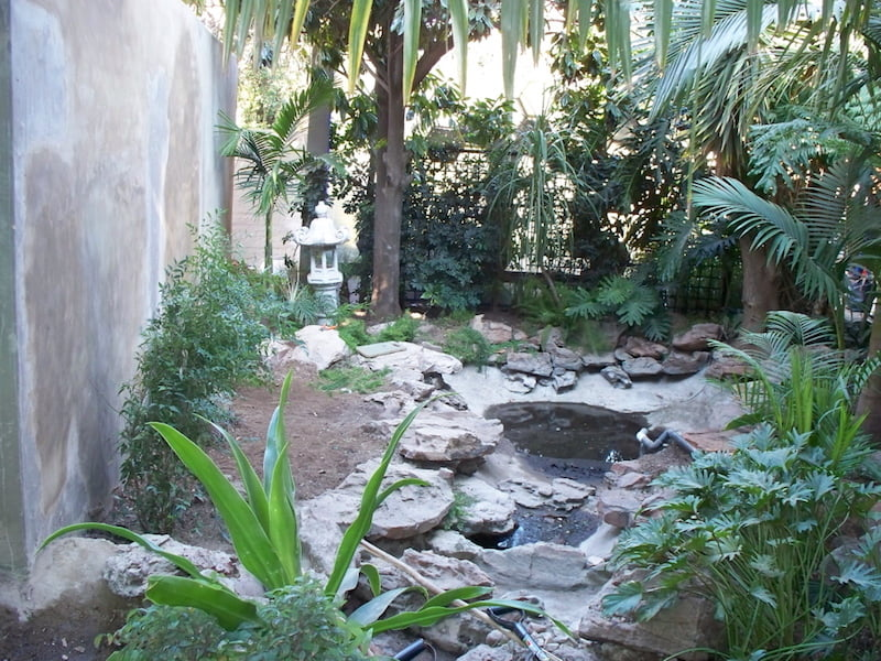 water-feature-in-brendas-garden-before