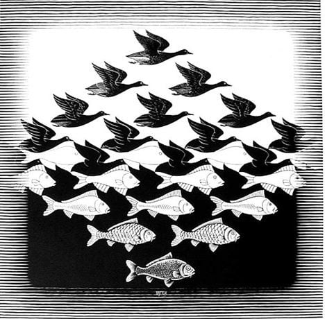 Escher Fish and birds