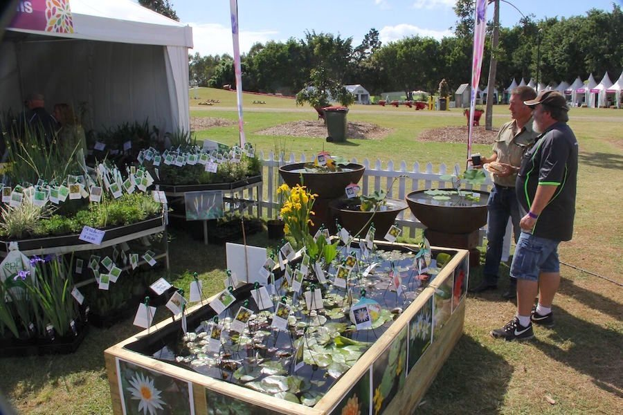 brisbane-international-garden-show-plant-sales