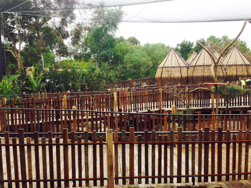 Commercial Landscape Construction, Warrandale Industries - Melbourne Zoo Lemur Project