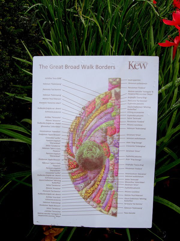 Design of the Great Broad Walk Border, Royal Botanic Garden Kew UK