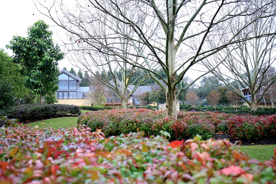 Landscape Management and Maintenance, Semken Landscaping - Plenty Project
