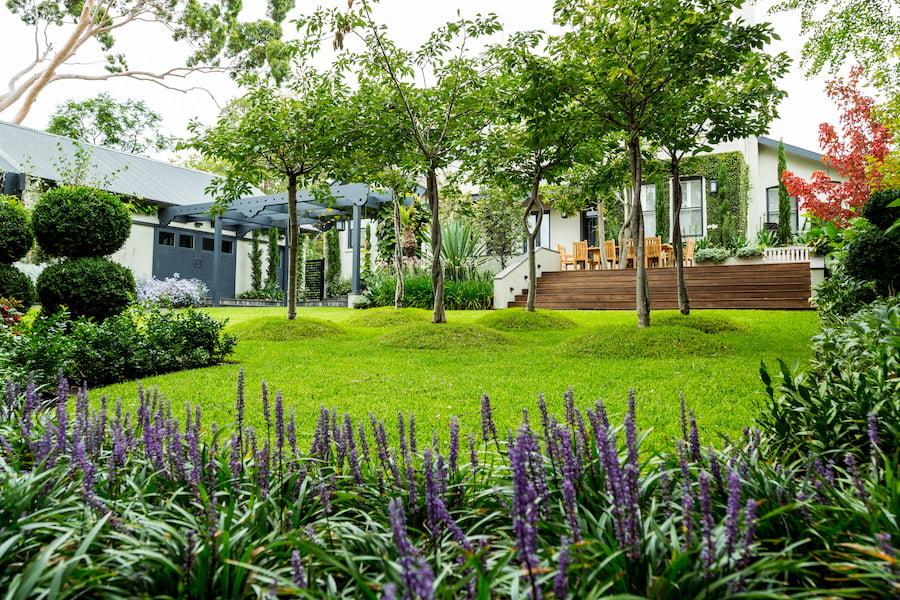 Plants in the Landscape - Jane Jones Landscapes, Kew