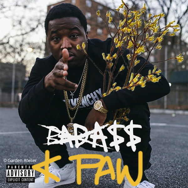 See? Badass, K Paws…you know I'm onto something, and rapper Troy Ave knows it too (rap-up.com)