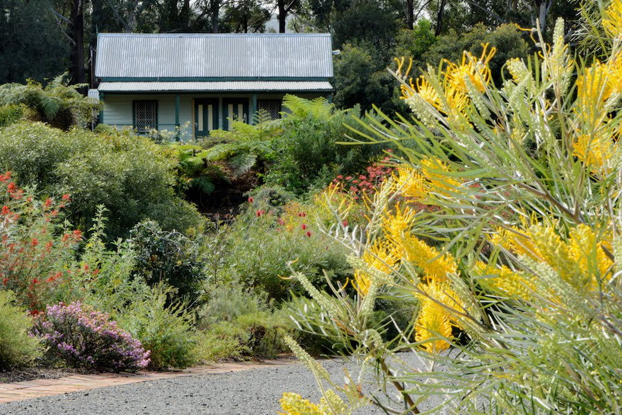 View to the 100 year old chapel inside Illawarra Grevillea Park