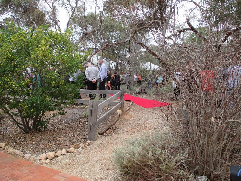 Bush wedding in Australian Inland Botanic Gardens Mildura