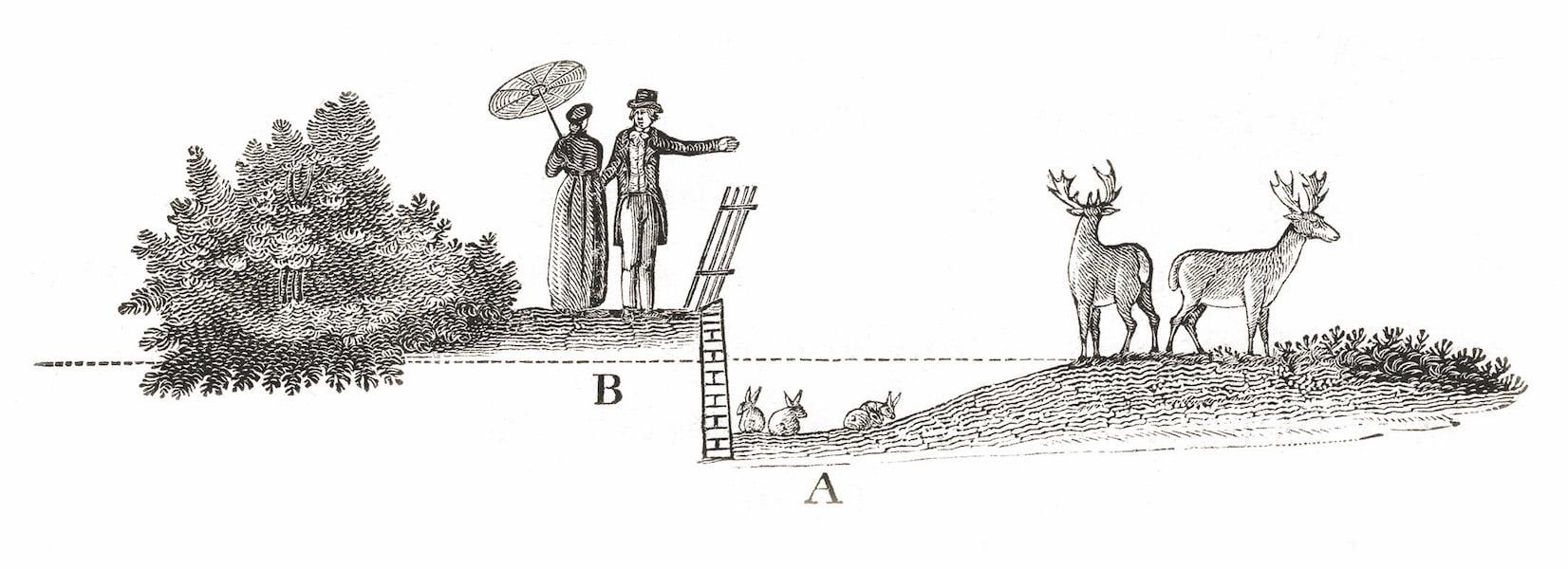 Illustration of Humphrey Repton's 'ha ha' in 'Planting Dreams - Shaping Australian Gardens' p33