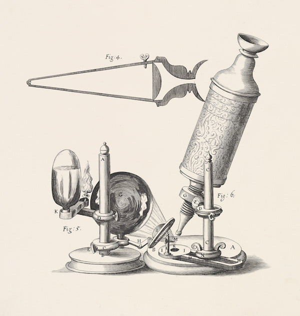 The microscope, depicted in Robert Hooke's Micrographia. In 'Planting Dreams - Shaping Australian Gardens' p29