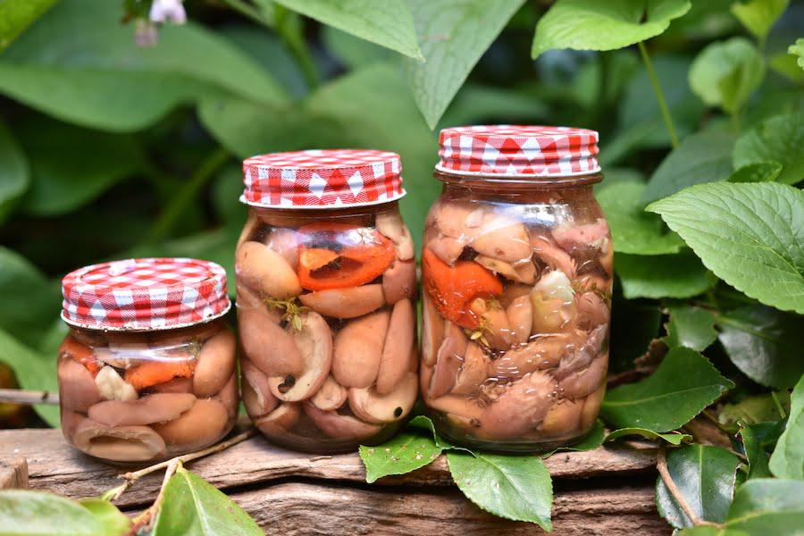 Cerignola olives preserved in glass jars